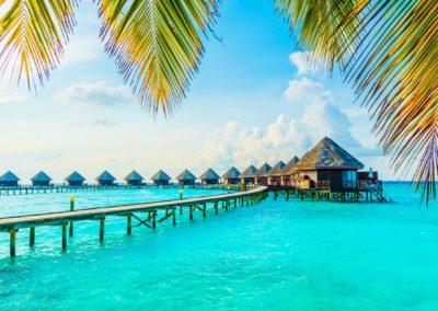 maldive (1)